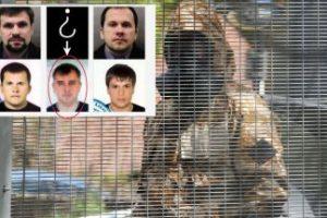 Прокуратурата разкри кои са обвиняемите руснаци за опита за убийство на Емилиян Гебрев